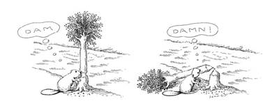 Beaver Drawing - New Yorker August 22nd, 1988 by John O'Brien
