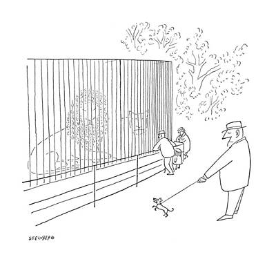 Zoo Drawing - New Yorker July 22nd, 1950 by Saul Steinberg