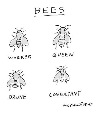 Bees Drawing - New Yorker July 25th, 1983 by Michael Crawford