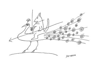 Peacocks Drawing - New Yorker June 11th, 1960 by Saul Steinberg
