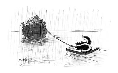 Skunk Drawings Fine Art America