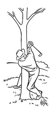 Golf Drawing - New Yorker November 19th, 1949 by George Price