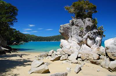 Photograph - New Zealand Beach And Cove by Cascade Colors