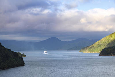 Photograph - New Zealand Ferry  by Alexey Stiop