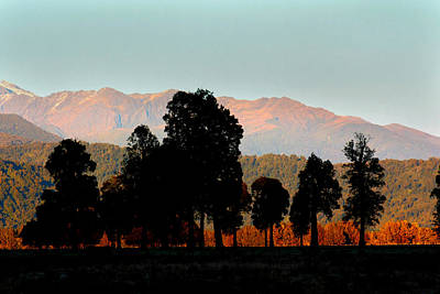 Art Print featuring the photograph New Zealand Silhouette by Amanda Stadther