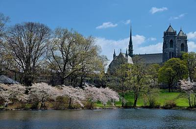 Church Photograph - Newark Branch Brook Park And Cathedral by Steven Richman
