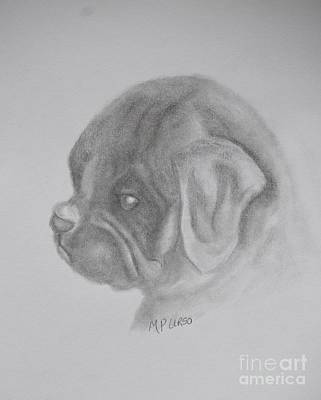 Drawing - Newbie by Maria Urso