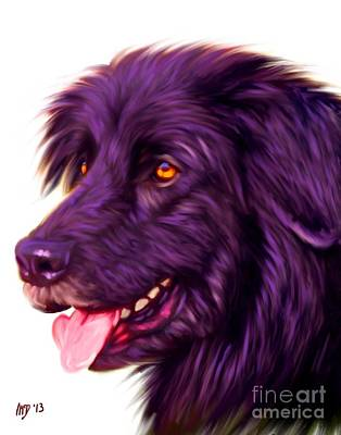Newfoundland Puppy Painting - Newfoundland Dog Portrait by Iain McDonald