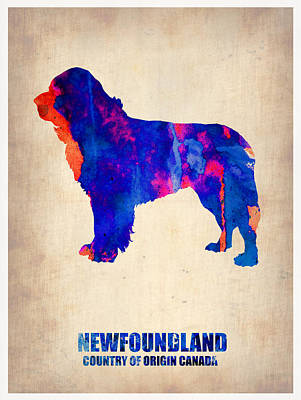 Colorful Dog Wall Art - Painting - Newfoundland Poster by Naxart Studio