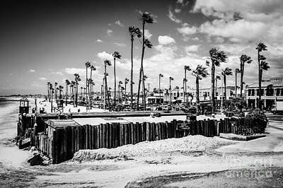 Newport Beach Dory Fishing Fleet Black And White Picture Art Print by Paul Velgos