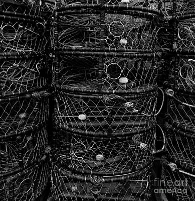 Photograph - Newport Crab Pots 2 by Chalet Roome-Rigdon