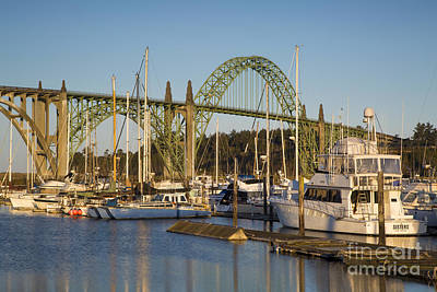 Photograph - Newport Harbor by Brian Jannsen