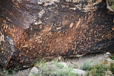 Photograph - Newspaper Rock by Cheryl McClure