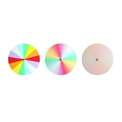 Disc Photograph - Newton's Disc Experiment by Science Photo Library