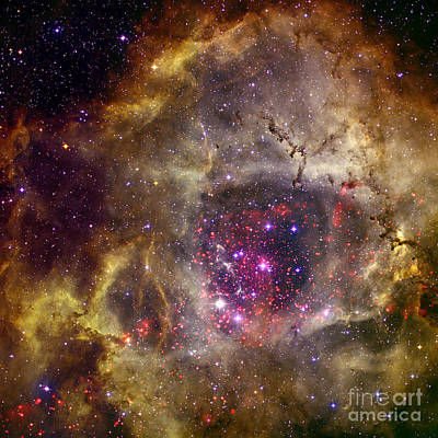 Heavenly Body Photograph - Ngc 2237 Caldwell 49 Rosette Nebula by Science Source