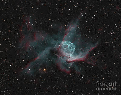 Photograph - Ngc 2359, Thors Helmet by Bob Fera