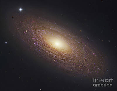 Photograph - Ngc 2841, Spiral Galaxy In Ursa Major by Robert Gendler