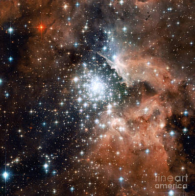 Heavenly Body Photograph - Ngc 3603, Star Cluster by Science Source