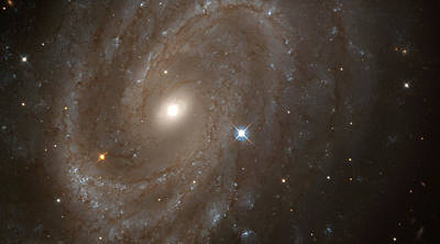Black Hole Photograph - Ngc 4603 by Celestial Images