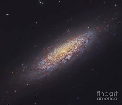 Photograph - Ngc 6503, Spiral Galaxy by Robert Gendler