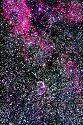 Ngc 6888, The Crescent Nebula Art Print