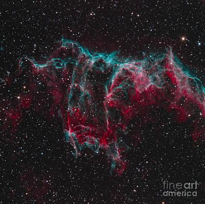 Photograph - Ngc 6995, The Bat Nebula by Bob Fera