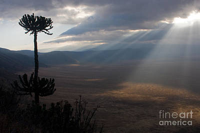 Photograph - Ngorongoro Crater by Chris Scroggins