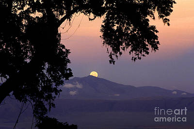 Photograph - Ngorongoro Crater Moonrise Tanzania by Craig Lovell