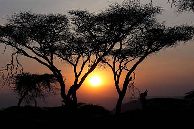 Photograph - Ngorongoro Sunset II by Dawn J Benko