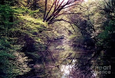 Photograph - Ni River by Anita Lewis