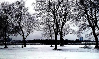Photograph - Niagara Winter Beauty by Iris Gelbart