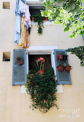 Photograph - Blue Window Of Flowers by Haleh Mahbod