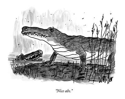 Crocodile Drawing - Nice Abs by Warren Miller
