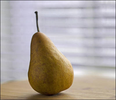 Photograph - Nice Pear by Rick Mosher