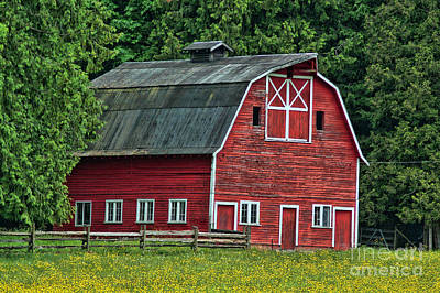 Catch Of The Day - Nice Red Barn HDROB306-06 by Randy Harris