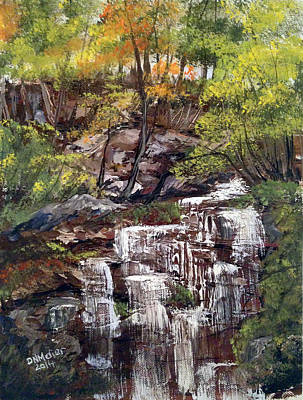 Nice Waterfall In The Forest Art Print