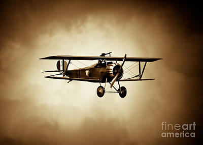 Photograph - Nieuport Scout by Rastislav Margus