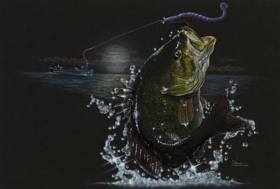 Night Bass Art Print
