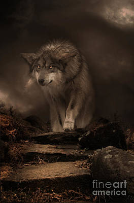 Digital Art - Night Breed by Lynn Jackson