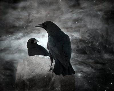 Two Crows Photograph - Mysterious Night Crows by Gothicrow Images