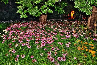 Niece Photograph - Night Flowers At Washington Square Park by Randy Aveille