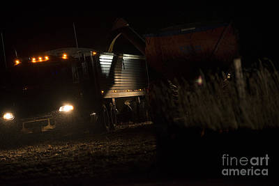 Photograph - Night Harvesting Corn In Snow by David Bearden