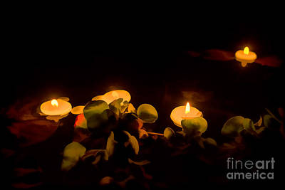 Photograph - Night In The Garden Pond by Gry Thunes