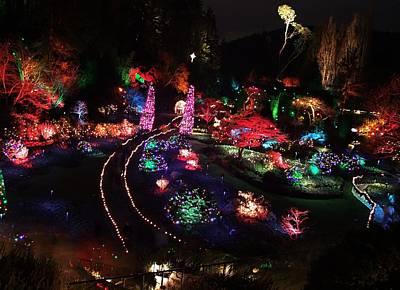 Photograph - Night In The Sunken Garden -2 by George Cousins