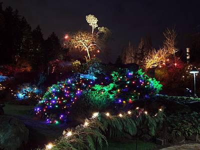 Photograph - Night In The Sunken Garden No.9 by George Cousins