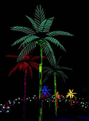 Photograph - Night Lights Electric Palm Trees by Karon Melillo DeVega