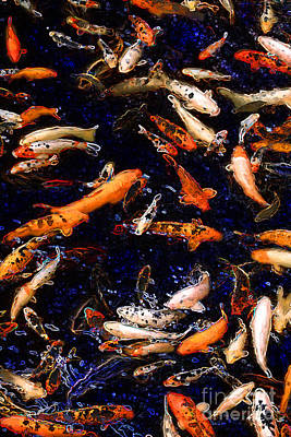 Mixed Media - Night Of The Koi by E B Schmidt