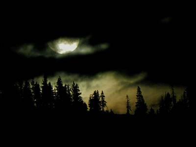 Night Of The Moon Art Print