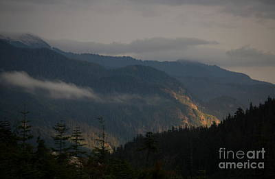 Photograph - Night On Cougar Mountain Series V by Amanda Holmes Tzafrir