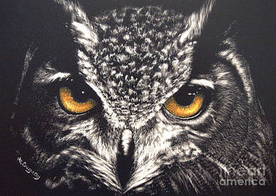Drawing - Night Owl by Lora Duguay